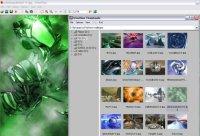 Irfanview, para orgnizar as imagens do seu computador